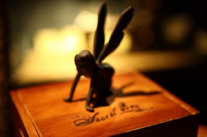 fairy on book