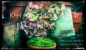 Treårskalas på Cranberry Corner