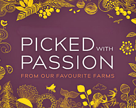 picked-passion-620x350